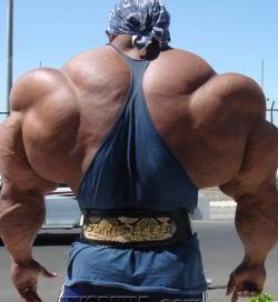 Мышцы и давление