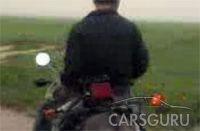 Первый в мире тюнингованный осел (видео)
