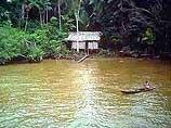 """Уничтожение амазонских лесов ведется \""""невиданными до этого темпами\"""""""