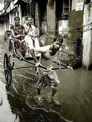 Лидером занятости трудящихся стала Южная Азия