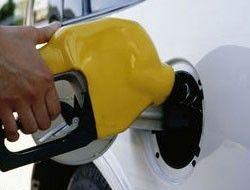 Высокие цены на нефть приведут к росту спроса на биотопливо