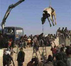 """Палестинские радикалы повторно \""""прорвали\"""" границу с Египтом"""