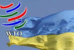 Украину пустили в ВТО