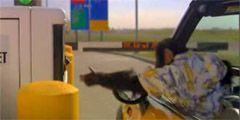 Простоту полетов через аэропорт Канзас-Сити рекламирует шимпанзе