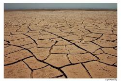 Пустыня на дне океанов уже покрывает 40% земной поверхности