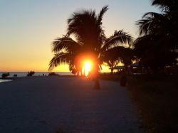 Большая коллекция качественных фотографий из Флориды (фото)