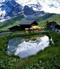 Швейцария возглавила список стран, добившихся наибольших успехов в экологической сфере