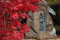Яркие японские пейзажи  (фото)