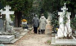 На кладбище во Львове организуют ночные экскурсии