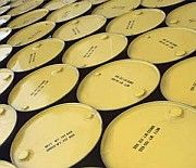 Royal Dutch Shell прогнозирует острый дефицит нефти к 2015 году