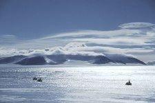 В Антарктику вторгаются чужеродные организмы