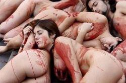 Испанские защитники прав животных разделись у шедевра Гауди (фото)