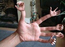 Японский тренажер научит ловкости рук