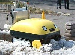 Снегоуборочный покемон