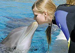В крыму появится оздоровительный дельфинарий
