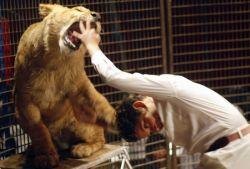 Самый маленький дрессировщик львов (фото)