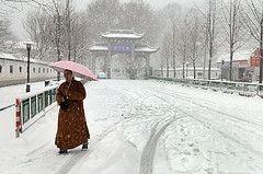 Снегопады вызвали энергетический кризис в Китае
