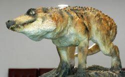 В Бразилии обнаружены останки ранее неизвестных предков крокодилов