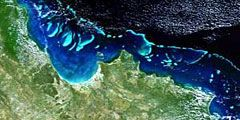 Большой Барьерный риф в Австралии исчезнет через сто лет