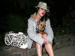 Суд назначил опекунство над Бритни Спирс