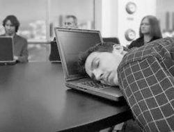 Сиеста по-русски. Как заработать на организации послеобеденного отдыха в офисах?