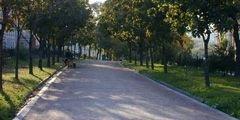 Московским бульварам вернут исторический вид