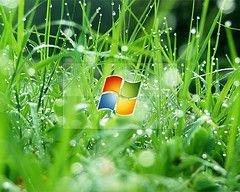 Microsoft увеличит траты на рекламу Windows Vista