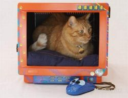 Домик для кота из старого монитора (фото)