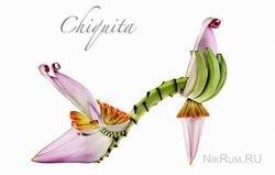 Необычная коллекция обуви от Michel Tcherevkoff: один вид растения - одна пара туфель
