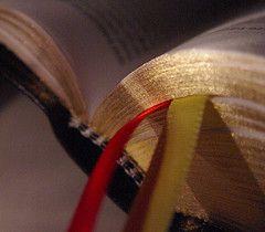 Год жизни по Библии и что из этого вышло
