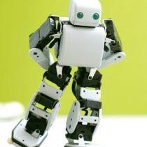 Робот Плен – самый популярный гаджет среди японцев (видео)