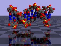 Обнаружено новое удивительное свойство ДНК