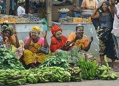 ВТО встала на сторону США в деле о дискриминационных тарифах на импорт бананов в ЕС