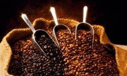 Россия потребляет около 3 млн 60−килограммовых мешков кофе в год