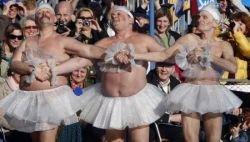В Англии прошел чемпионат по плаванию среди моржей (фото)