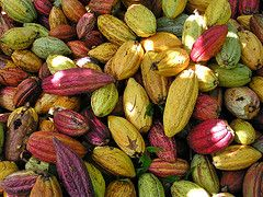 Производители шоколада терпят убытки из-за роста цен на какао