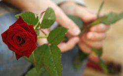 14 самых романтичных роликов ко дню Святого Валентина (видео)