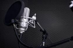 Voice Digger - первый поисковик по фонограммам русской речи