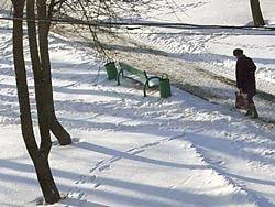 В выходные в Центральной России похолодает до минус 23