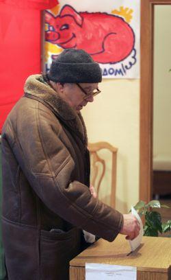 Коммунисты создают альтернативную электронную систему подсчета голосов