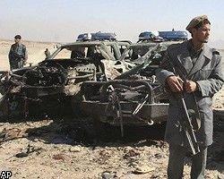 Теракт на собачьих боях в Афганистане: погибли 80 человек