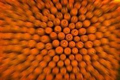 Морковь обостряет зрение в темноте