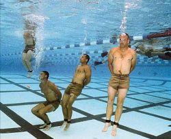 Как в Новой Зеландии учат плавать взрослых людей? (видео)