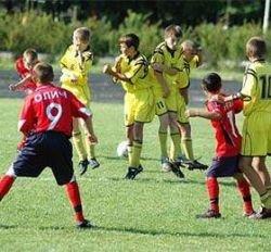 В Звенигороде построят Национальный центр футбола