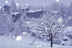 Из-за сильного снегопада Абхазия лишена электроэнергии