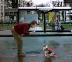 Забавный рекламный ролик компании Umbro (видео)