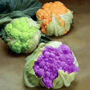 На рынок вышла очень цветная капуста