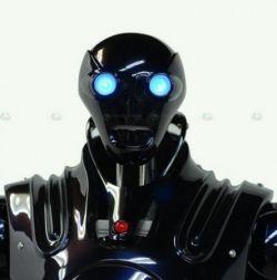 Индия приступила к разработке собственных воинов-роботов