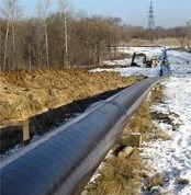Экологи требуют от Exxon Neftegas изменить трассу трубопровода