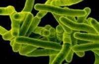 ВОЗ говорит о появлении новых форм туберкулеза
